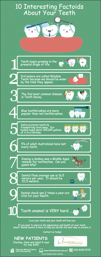 10-Interesting-Factoids-About-Your-Teeth